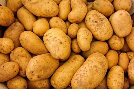Biohotel Lindengut Hofverkauf Demeter Kartoffeln