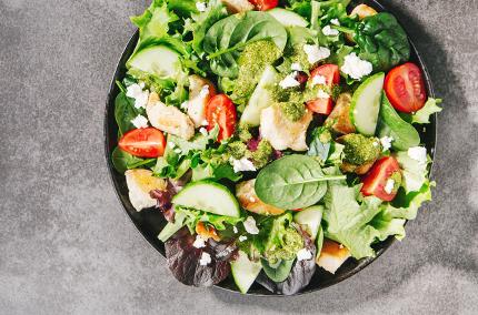 Biohotel Lindengut Fasten zu Hause Salat