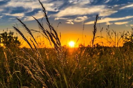 Biohotel Lindengut Fastenwandern in der Rhön Sonnenuntergang