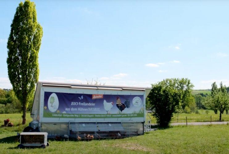 Biohotel Lindengut Dipperz Demeter Landwirtschaft Tierhaltung Hühnermobil